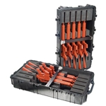 Pelican Protector Weapons Case 1780